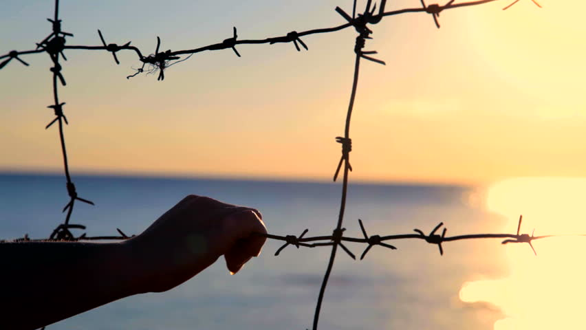 Silhouette of hands on the barbed wire at sunset