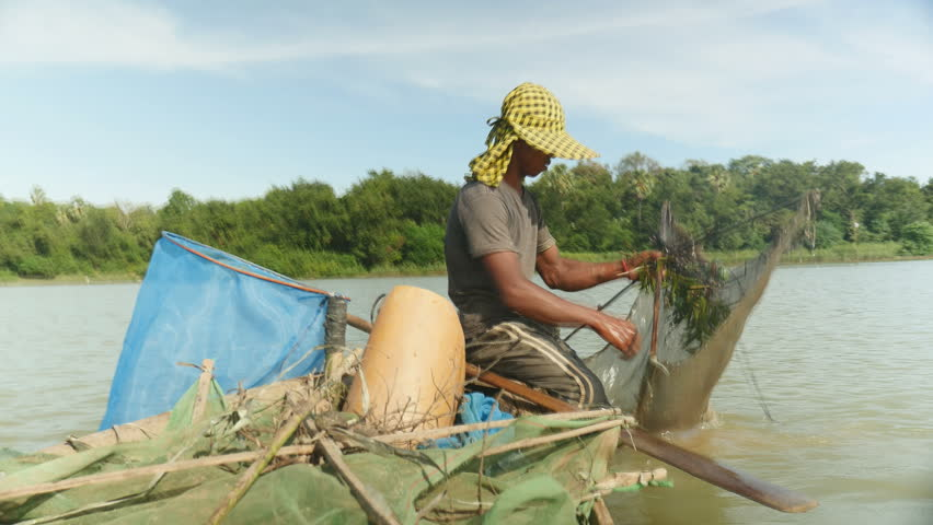 Prawn fisherman baiting net, dropping and pushing it deeper into river with paddle for a catch, southeast asia, cambodia