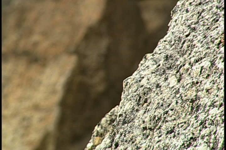 Rock Climbing #1099966