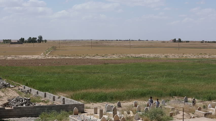 A wheat field besides cemetery at Amerli in Iraq. Amerli steadfastness to ISIS was a turning point in the war between Iraqi government and ISIS