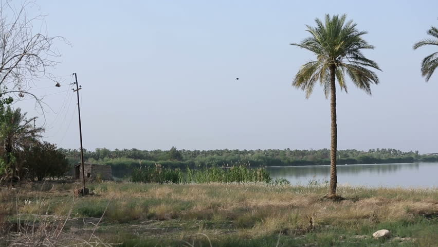 Palm trees on the banks of Euphrates River at Jurf Al Nasr, Iraq, pan right. in 2014, Jurf Al-Nasr witnessed  fierce battles between ISIS and Iraqi army supported by popular mobilization forces