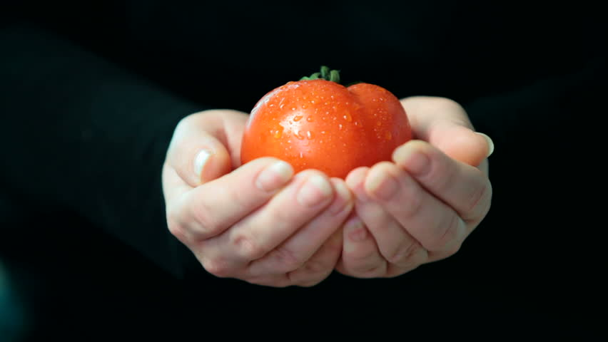 Women hands holding red fresh tomato - HD stock footage clip