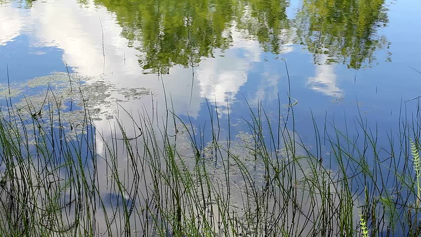 Reflection of clouds in water. Forest lake. The background and texture. For labels and titles. The sky and clouds. A certain inversion. Clean water in the pond. Quiet nature.
