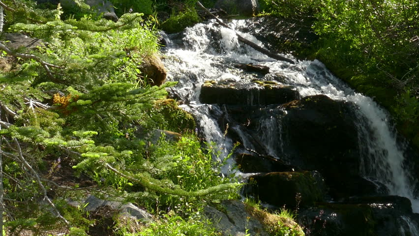 A small waterfall flowing in a stream at  Lassen Volcanic National Park in California, United States of America.