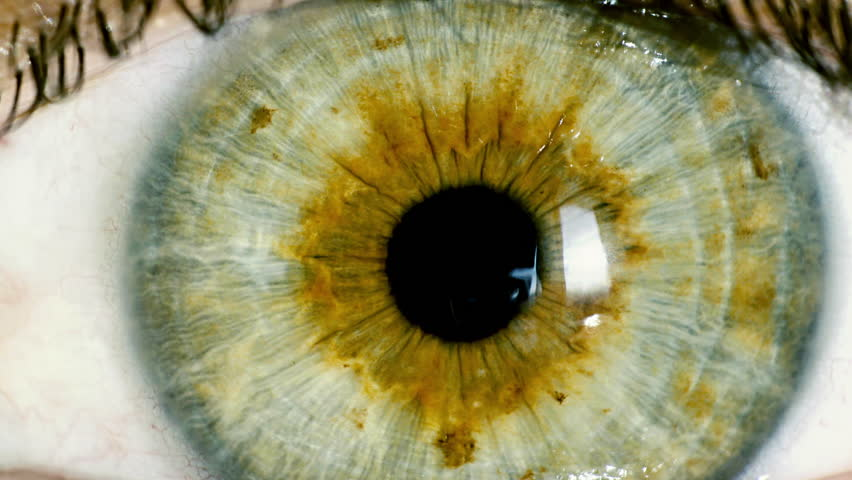 Female green eye close up extreme macro zoom in iris.HD real time extreme close up shot of the wide open human eye of a female.Big zoom in,eye blinking.