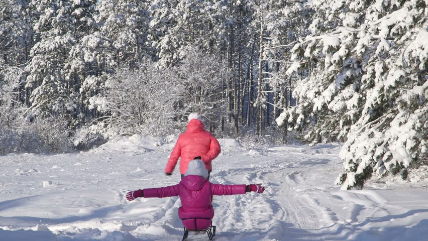 Mother pulling child on sled through snow in winter forest - HD stock footage clip