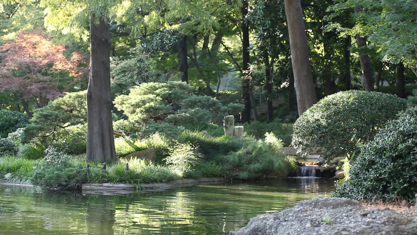 A peaceful garden scene with waterfall running by the rocks, bushes, trees and a quiet water lake pond. | Shutterstock HD Video #1225012