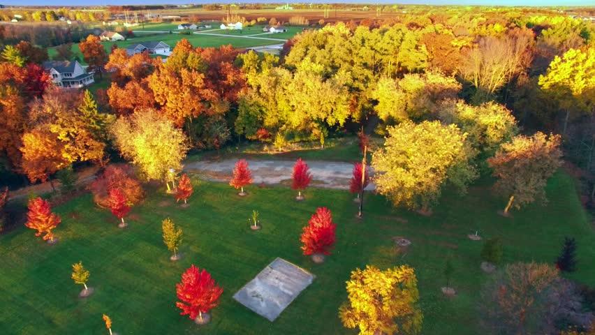 Amazingly Colorful Autumn Trees at Sunrise