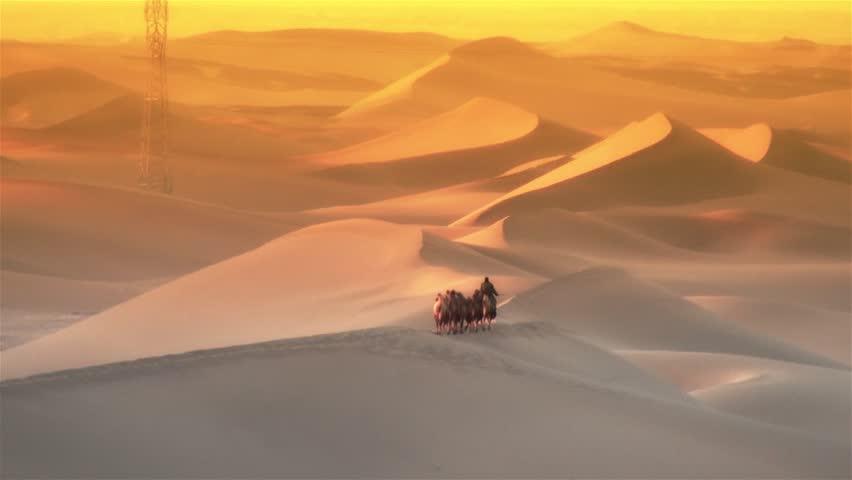 Camel crew walking in the desert, wide shot