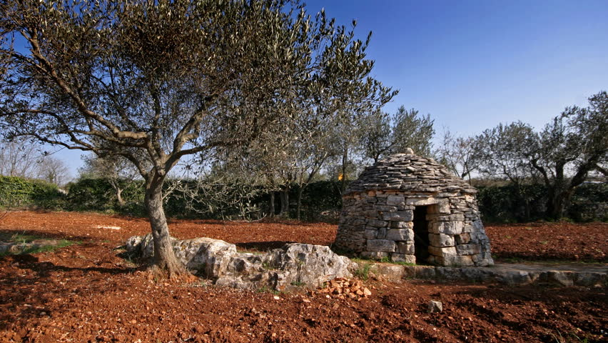 Shot of the typical Istrian surrounding, kazun, the stone shelter and the olive tree - HD stock footage clip