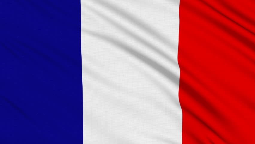 French flag, with real structure of a fabric | Shutterstock HD Video #134419