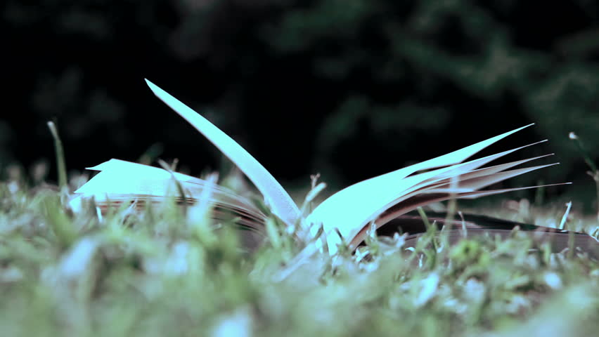 Book in the grass - HD stock video clip
