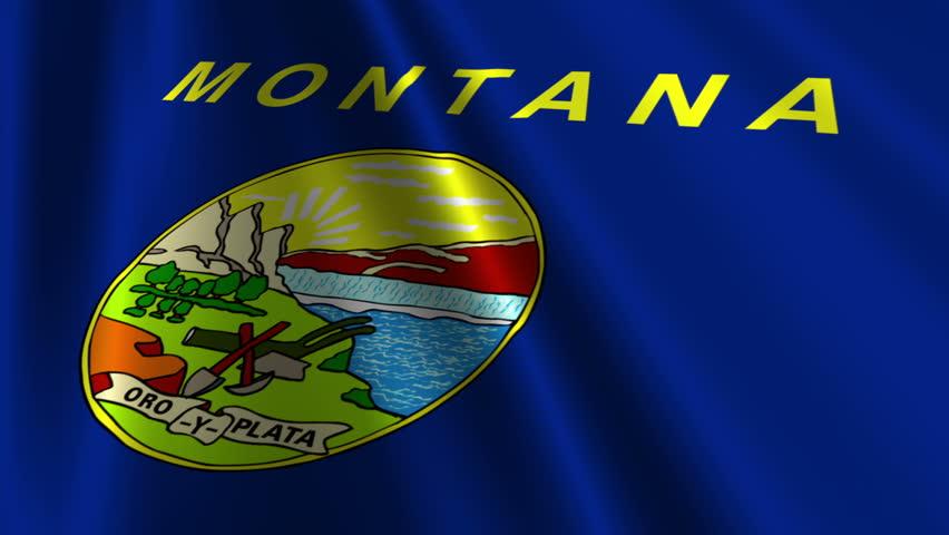 Montana Flag Loop 3 - HD stock footage clip