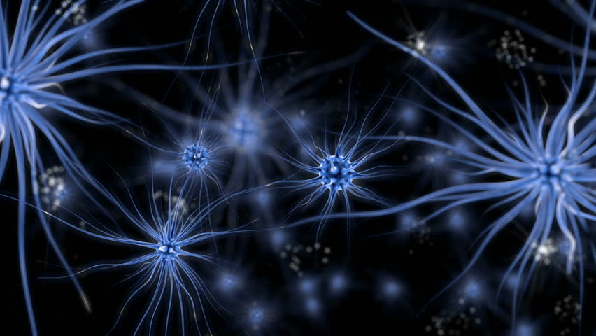 Brain impulses. Neuron system. Human anatomy. transferring pulses and generating information, medical concept.  - HD stock video clip