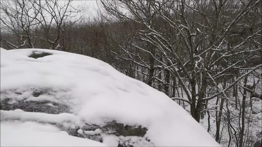 Winter snow falling rock trees | Shutterstock HD Video #14486251