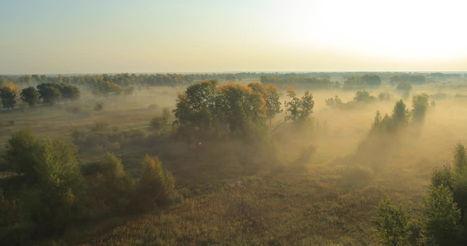 Aerial View. Panoramic Autumn landscape. The picturesque landscape with river, trees and field. Morning Fog. Aerial camera shot. Altai, Siberia. | Shutterstock HD Video #14499400