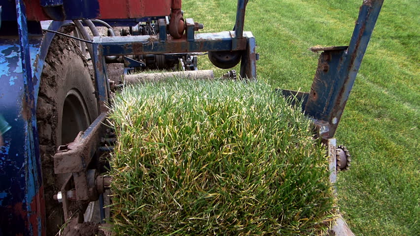 Machine cutting grass turf.   Shutterstock HD Video #14684323