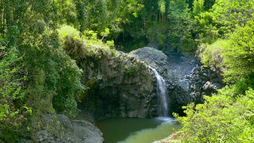 Akaka waterfall wide shot green surround on the big for Waterfall environment