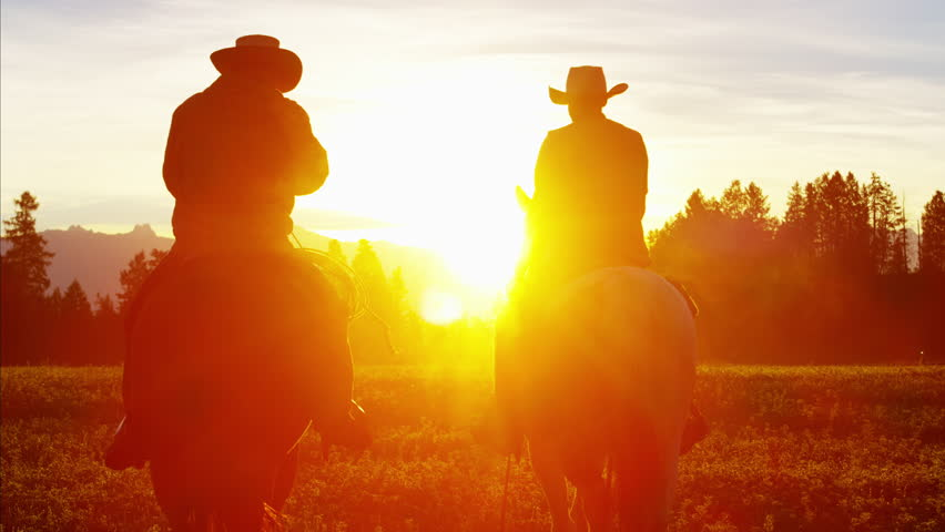 Silhouette of Cowboy Riders forest wilderness area Canada | Shutterstock HD Video #14724481