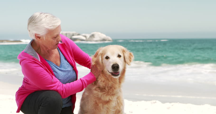 Old retired woman with dog on the beach | Shutterstock HD Video #14776267