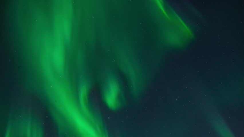 Northern lights (Aurora Borealis) in a cloudless night sky #14794321