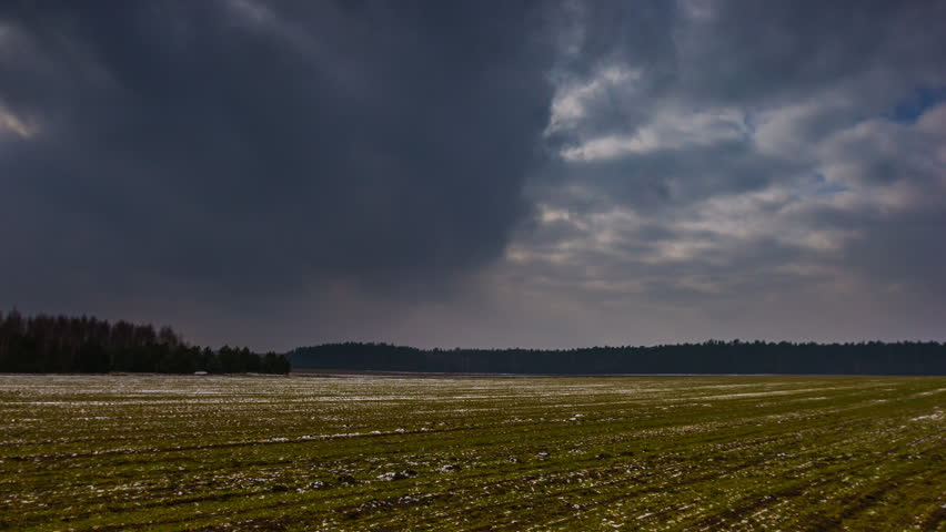 4k timelapse of young cereal field at springtime under heavy cloudy sky. 4096x2304, 25fps #14943118