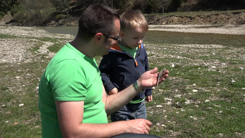 Father holding a lizard in hand curious little child looking closely to animal, early education, love animals - 4K stock video clip