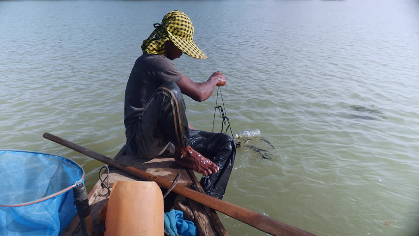 Fisherman pulling drop net out of the river, catching prawns and baiting net again for a new catch