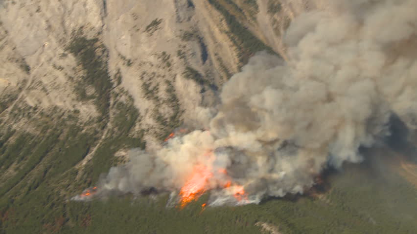 Forest fire big flames aerial spectacular - HD stock video clip