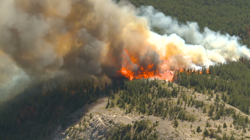 Forest fire big flames aerial - HD stock footage clip