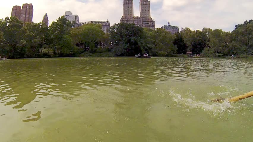 Paddle of boat floating on pond in Central Park in New York, action camera - HD stock video clip