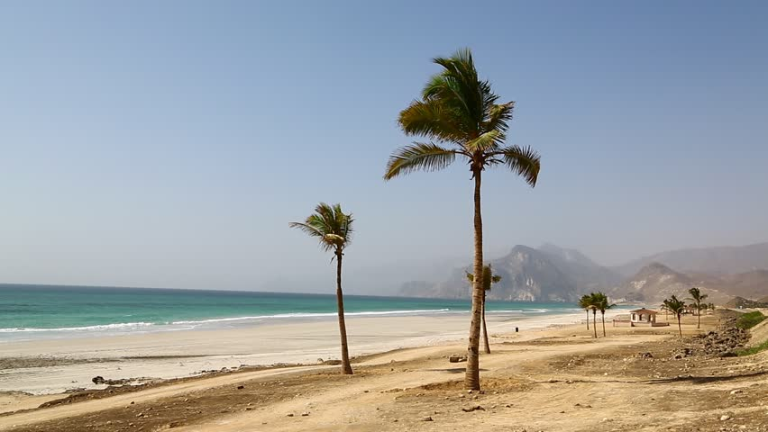 near sandy beach sky  palm   and mountain in oman arabic sea  the hill   #16179970