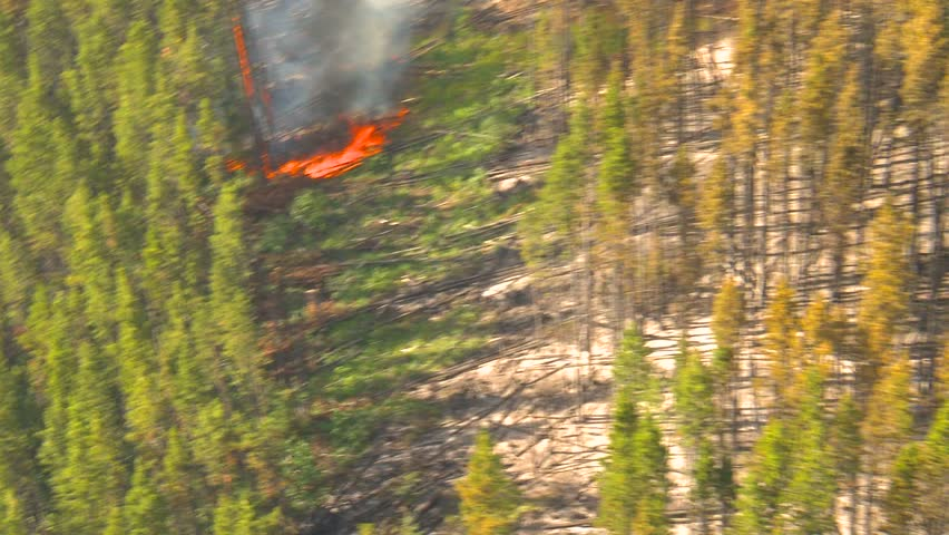 aerial, gyro-stabilized, over forest fire small flames below - HD stock video clip