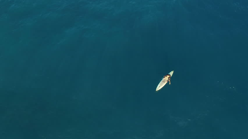 Aerial shot of surfer wait the waves - sitting on a surfboard, Hawaii - 4K stock footage clip