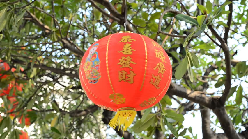 Red Chinese lantern with the Chinese character Blessings written on tree   Shutterstock HD Video #16484494