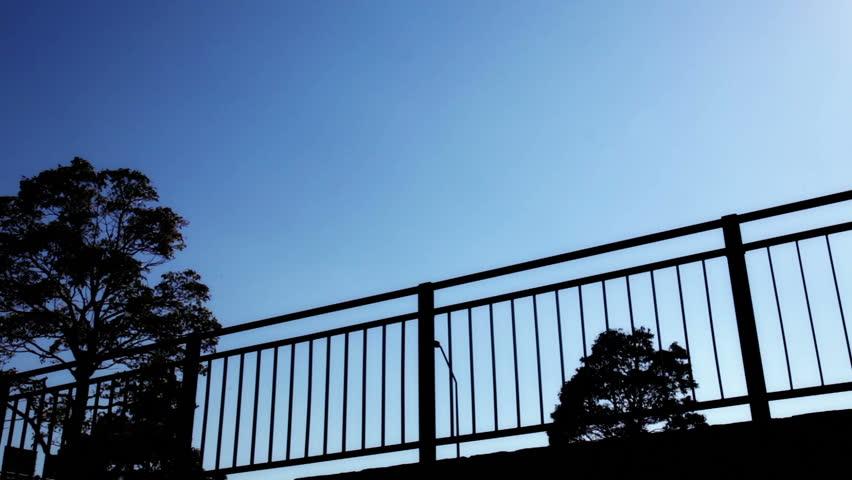 Silhouette, Blue Gradient, People Walking on Street | Shutterstock HD Video #16770253
