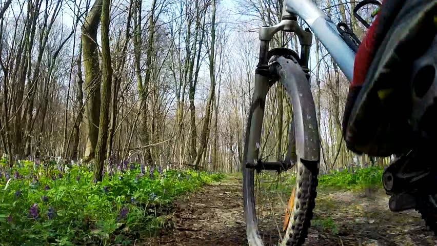 Wide low angle point of view of cyclist bike while riding bicycle on forest road.   Shutterstock HD Video #17142430