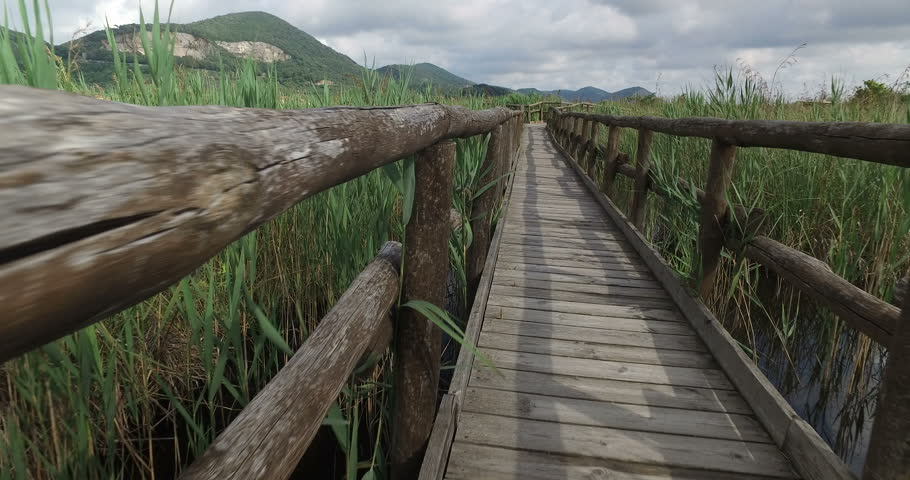 Slider on a Little Bridge of Wood on a Pond. Lake under the bridge. | Shutterstock HD Video #17145643