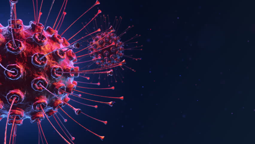 Animation of bacteria virus or germs microorganism cell under microscope with depth. Animation of seamless loop. | Shutterstock HD Video #17197456