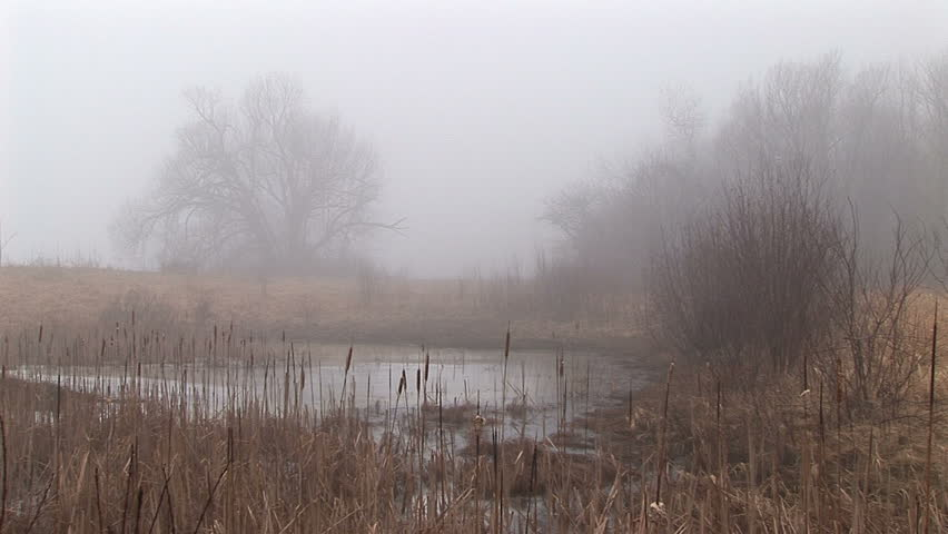Small foggy lake in upstate New York | Shutterstock HD Video #1721227