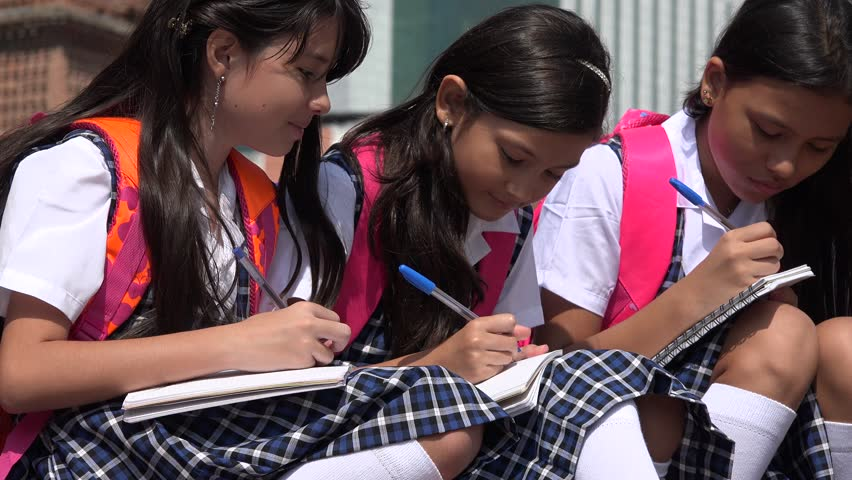 Student Girls Writing In Notebooks | Shutterstock HD Video #17385889