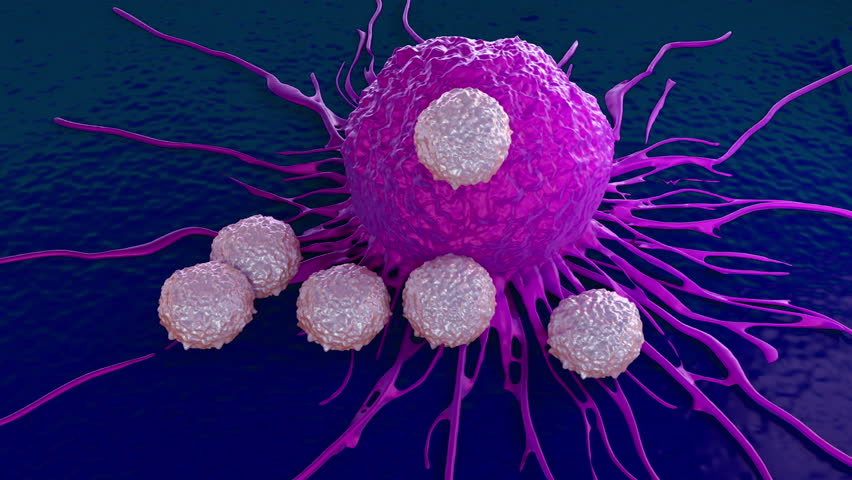 tcells attacking cancer cell illustration of microscopic