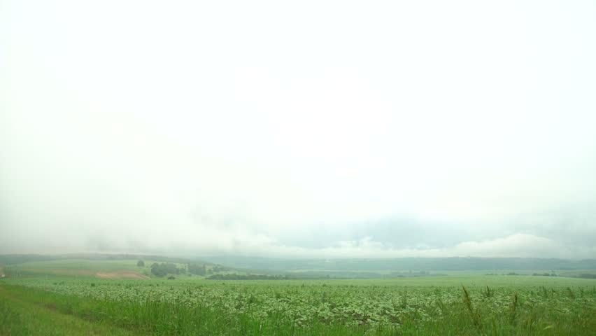 summer green field with low clouds - 4K stock video clip