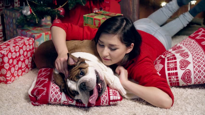 The girl playing with funny bulldog under fir-tree | Shutterstock HD Video #19119433