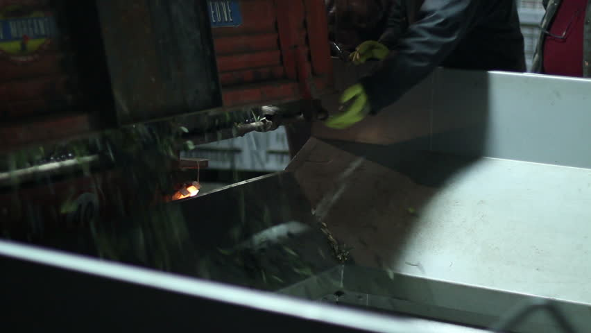 Oil mill - olive oil production - Series - HD stock video clip