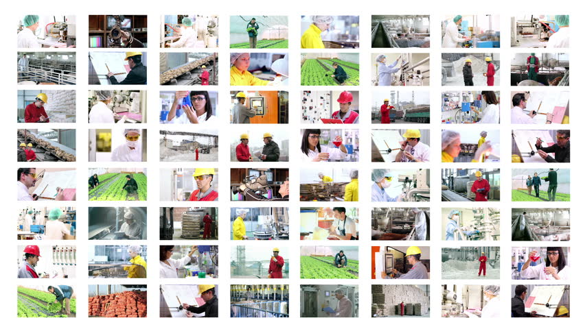 People at Work. Collage of video clips showing people of different professions at work. HD1080p. - HD stock footage clip
