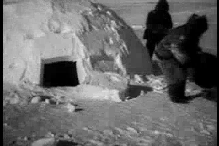 An Eskimo drags a dead seal and his own child into his igloo in 1922. (1920s)