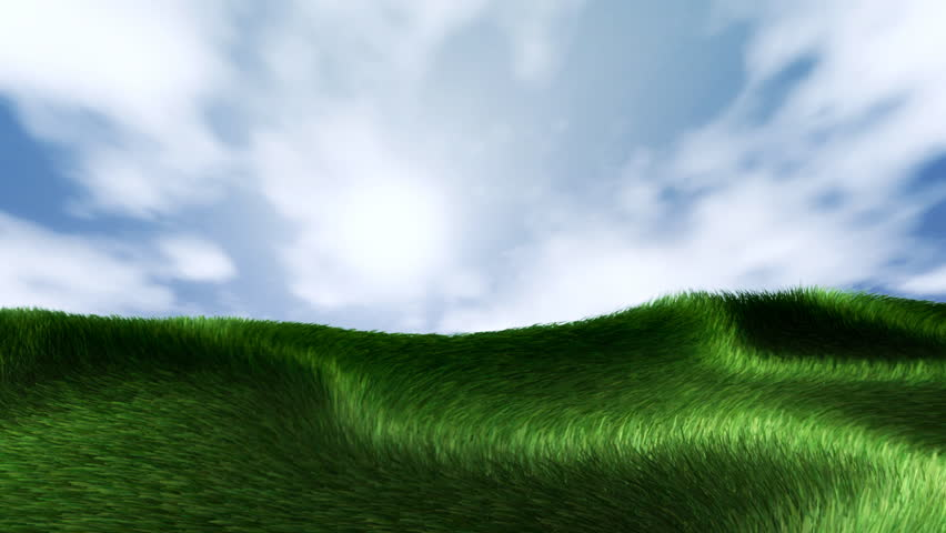 Green grass background. Grass is moving with a heavy wind. With alpha channel.
