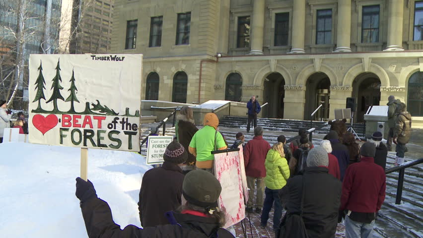 CALGARY, CANADA - FEBRUARY 14: Alberta Wilderness Association and other environmental groups protest commercial logging activity in the Castle River area on February 14, 2012 in Calgary, Canada. - HD stock video clip