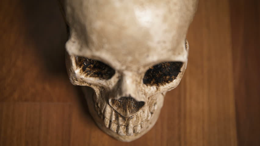 Human Skull CU overhead shot with wooden background, shallow depth of field | Shutterstock HD Video #20045506
